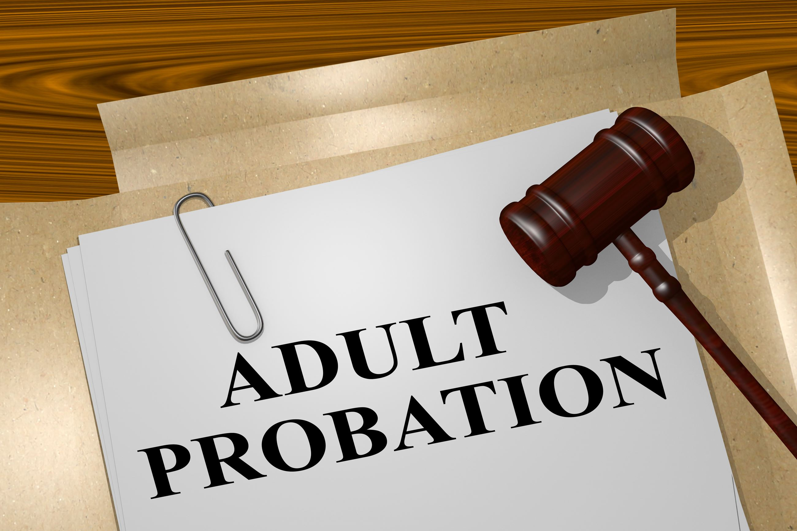 Adult Probation Department   St  Joseph County, IN